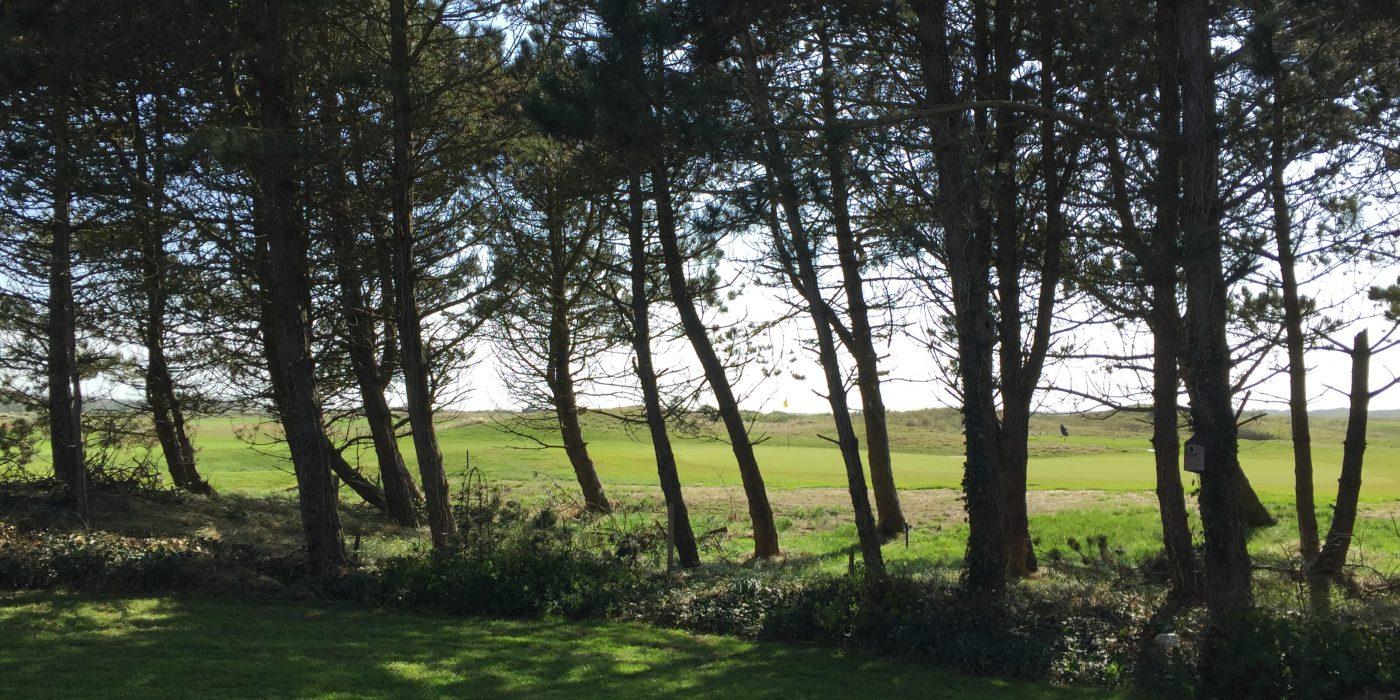 golbaanTexel-golfaanbieder.nl-3